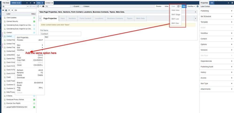 Open published URL menu.jpg